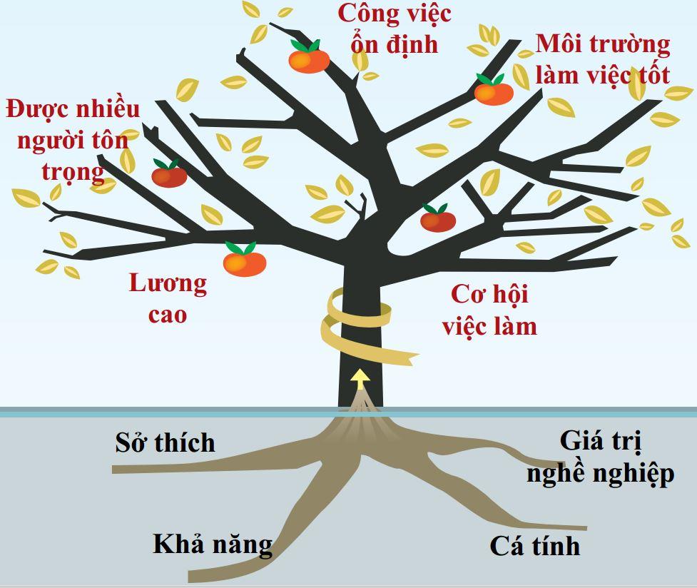 Mô hình lý thuyết cây nghề nghiệp